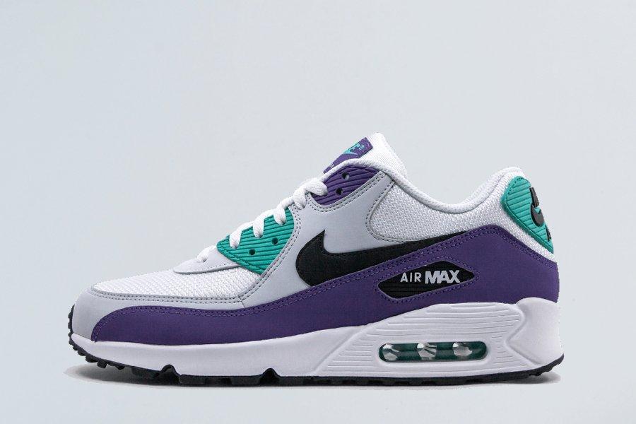 Nike Air Max 90 Essential Grape AJ1285-103 For Sale