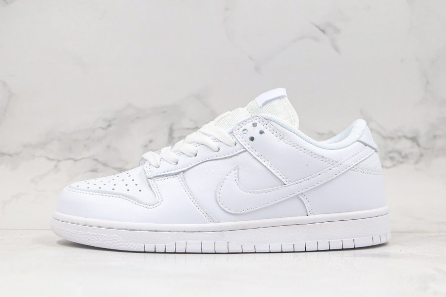 Nike Dunk Low Pro White Ice 304292-100 For Sale